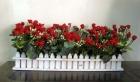 Hàng rào hồng nhí 50cm P0073 (hết hàng)