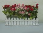 Hàng rào hoa hồng nhí 3T P0085 (hết hàng)