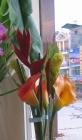 Hoa chuối đỏ F000200 (hết hàng)