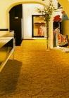 . Thảm trải sàn SA262