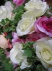 Bụi hồng F000463 (hết hàng)