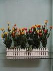 Hàng rào Tulip P0076 (hết hàng)