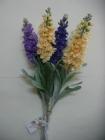 Hoa Violet FVL02(hết hàng)
