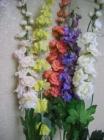 .Hoa đuôi chồn F000340