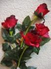 .Hoa hồng 4B F000500
