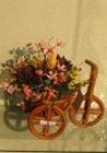 Hoa khô xe đạp to D000001