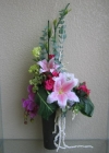 Ly hồng phong lan tím G000105(hết hàng)