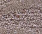 Thảm trải sàn R02
